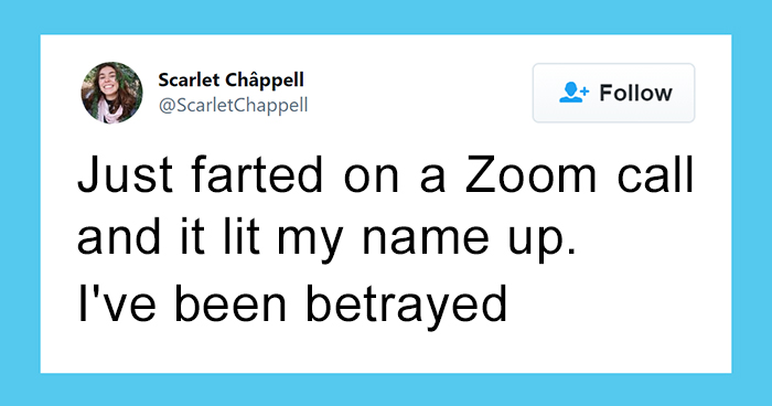 50 Funny Tweets From People Who Are So Done With Zoom Calls