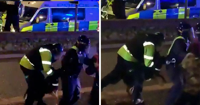 'He Did What He Was Taught': Police Dog Bites A Cop Who Brutalized A Protestor