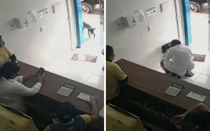 """""""He Put The Injured Paw Forward"""": Video Shows Stray Dog Wandering Into A Vet Clinic As If To Ask For Help"""