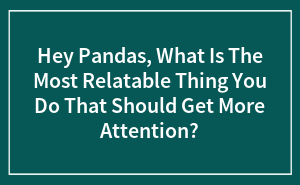 Hey Pandas, What Is The Most Relatable Thing You Do That Should Get More Attention?