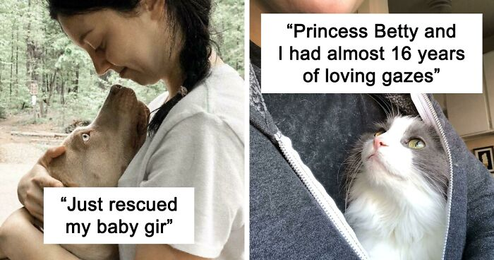 51 Pets Lovingly Staring Into Their Owners' Souls That Are Warming Everyone's Hearts (New Pics)