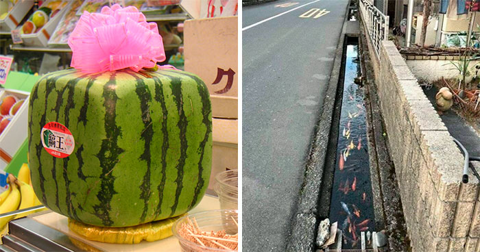 33 Facts That Prove Japan Is Unlike Any Other Country