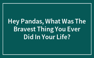 Hey Pandas, What Was The Bravest Thing You Ever Did In Your Life?