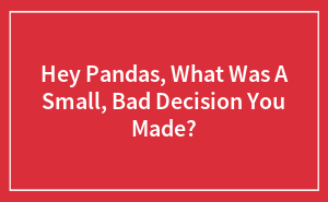 Hey Pandas, What Was A Small, Bad Decision You Made?
