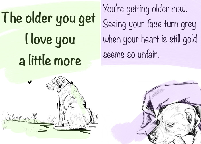 "I Made A Comic Called ""The Older You Get, I Love You A Little More"" (27 Pics)"