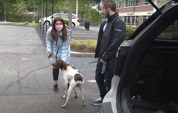 News Anchor Reporting On A Stolen Puppy Sees The Same Dog In The Street, Realizes It's The Kidnapper Walking Him