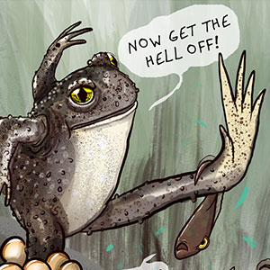 I Created Comics About The Weirdest Dads In The Animal Kingdom (20 Pics)