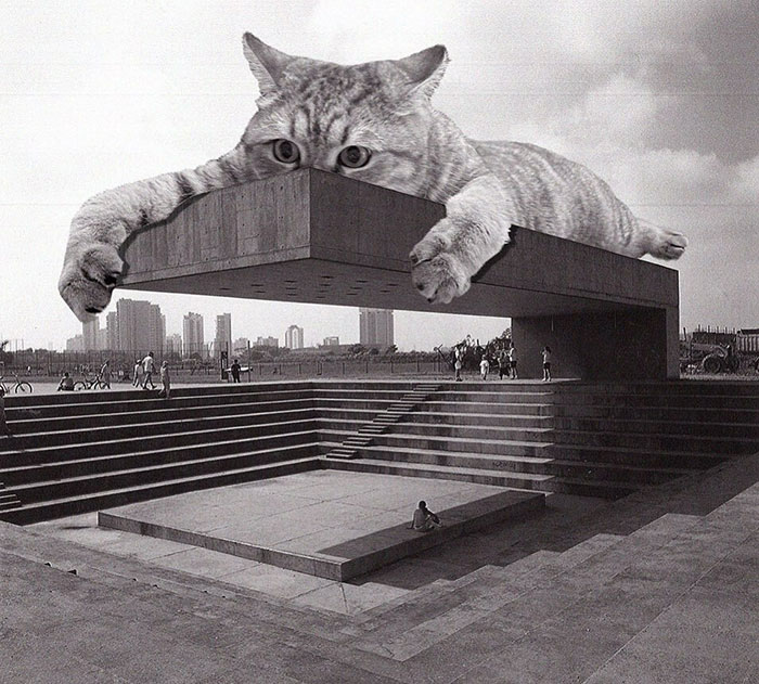 Instagram Account Combines Brutalist Architecture With Giant Cats And The Result Is Adorable (87 Pics)