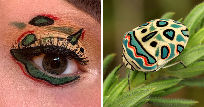 Artist Shows The Beauty Of Insects With Her 30 Matching Eye Makeup Looks